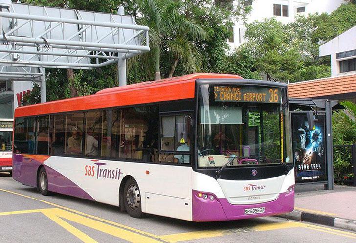 Public Bus (36-36A)