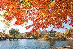 Thời tiết Seoul – Khi nào là thời điểm tốt nhất để du lịch Seoul