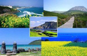 Jeju – Viên ngọc quý của Hàn Quốc